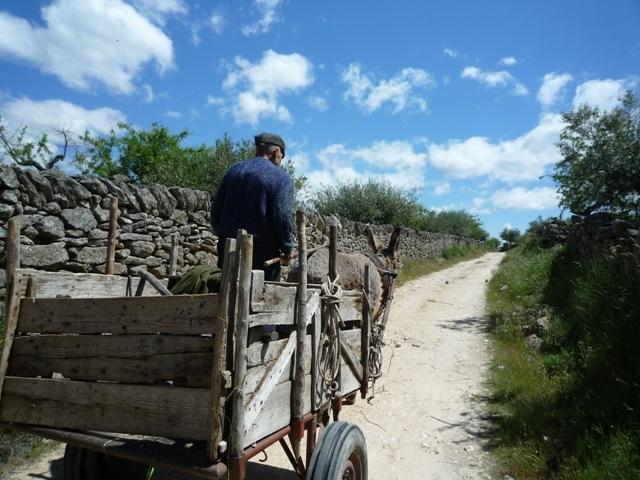 leven op het Portugese platteland